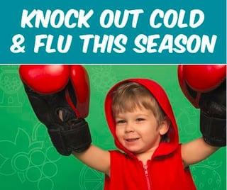 Knock_out_flu_season.jpg